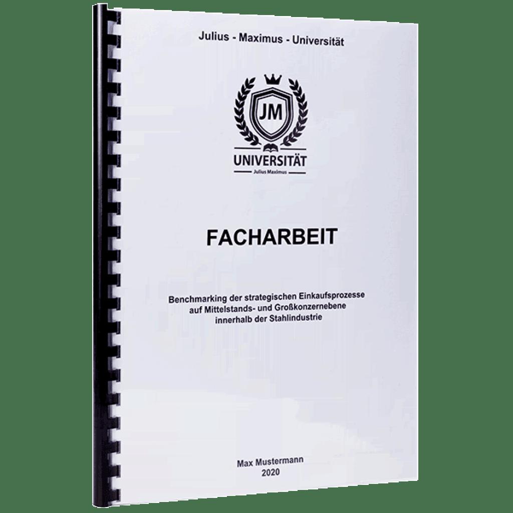 Deckblatt Facharbeit 9 Klasse Lerepairedugame