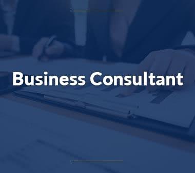Business-Consultant