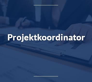 Projektkoordinator Jobs