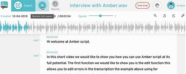 Transkription Interview Transkript bearbeiten