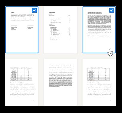 Lektorat Dissertation Seitenauswahl